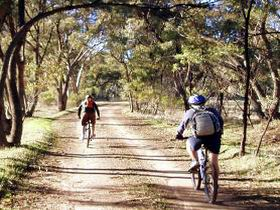 Bike About Mountain Bike Tours And Hire - Accommodation Cooktown