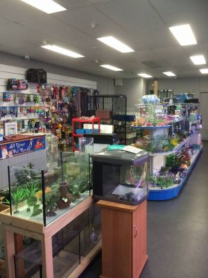 Nambour Pet Shop - Accommodation Cooktown