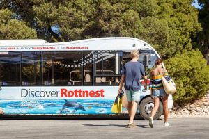 Rottnest Island Tour from Perth or Fremantle including Bus Tour - Accommodation Cooktown