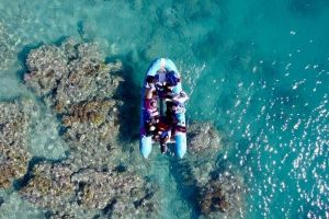 Glass-bottom boat tour with Whitehaven Beach - Accommodation Cooktown