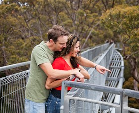 Valley of the Giants Tree Top Walk - Accommodation Cooktown