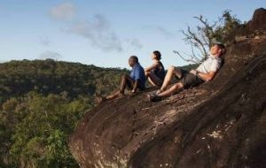 Cooktown Aboriginal Art Tours - Accommodation Cooktown