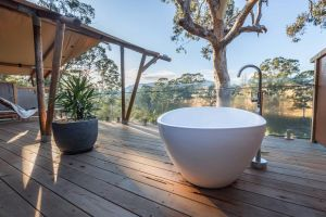 Currajong Retreat - Accommodation Cooktown